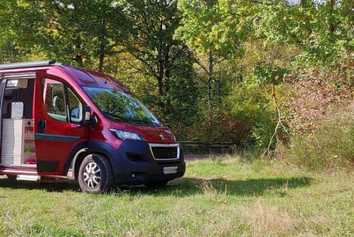 Hire a campervan in Hamburg from private owners| Bravia RED SURFER