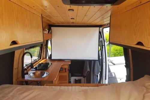 Hire a campervan in Encarnação from private owners  Mercedes JSS Sprinter 20