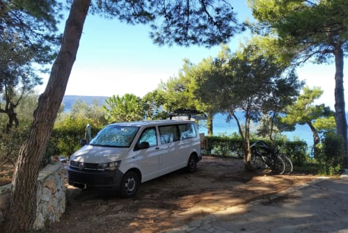 Hire a campervan in Frankfurt am Main from private owners| VW Marga 4 Motion