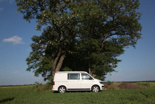 Hire a campervan in Berlin from private owners| VW BUS CAMPER  BRO